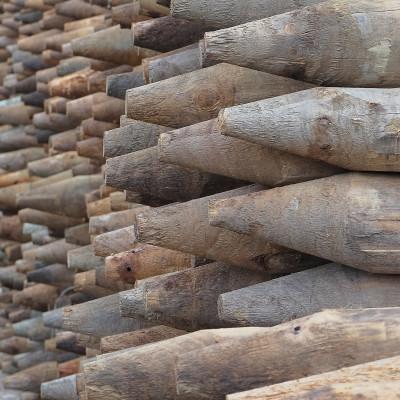 Point-Lumber_DSCF0423[6]