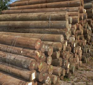 Point-Lumber-20160304__005